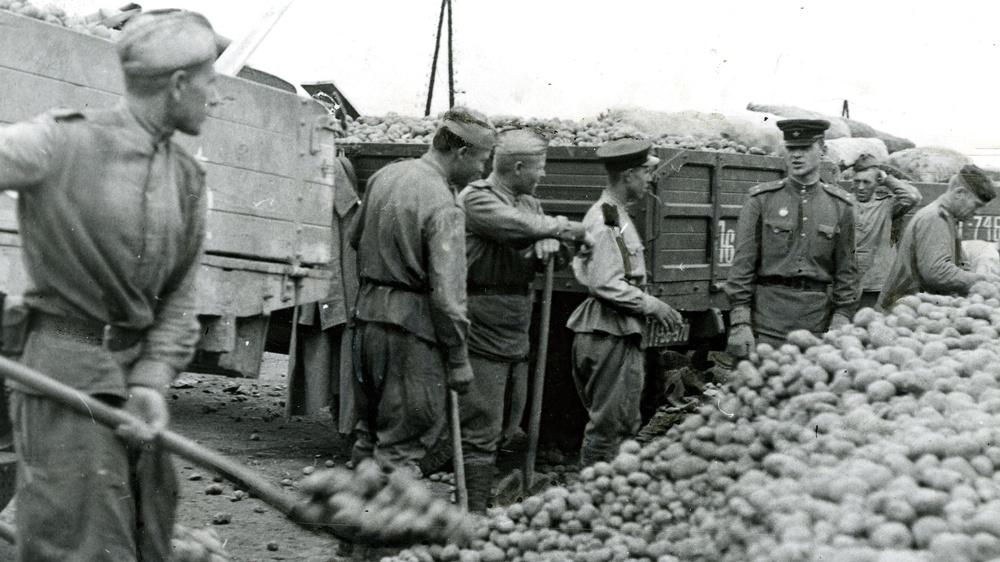 Erdäpfel für Wien, 1945 © APN Bilderdienst, ÖGB